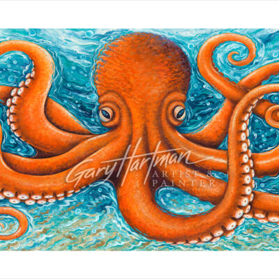 Octopus-Full-20x10-WM-Web