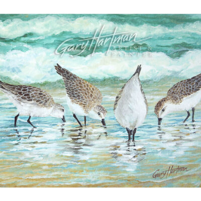SandPipers-Crop-14x11-WM-Web